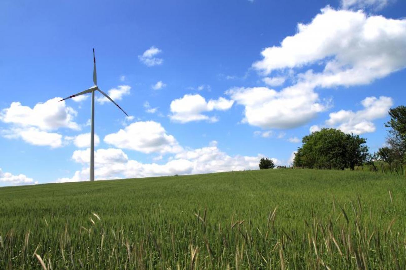 Lövői szélerőmű - A szélenergia szakérője